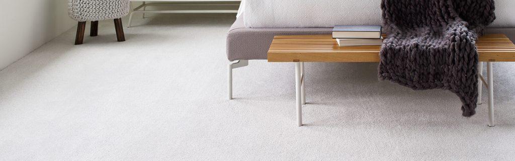 shaw floors carpet flooring | Haley's Flooring & Interiors
