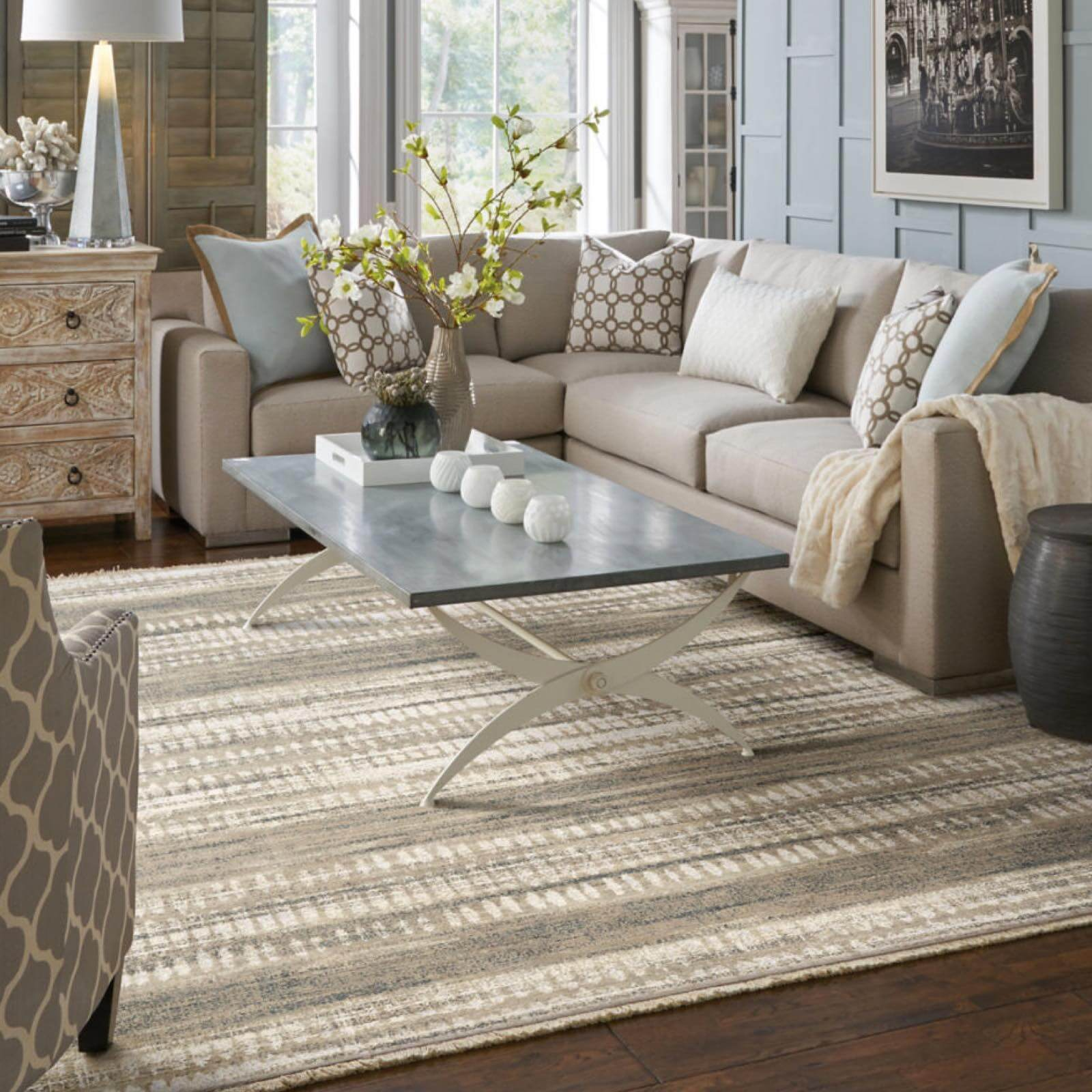 Area Rug in LIving Room | Haley's Flooring & Interiors