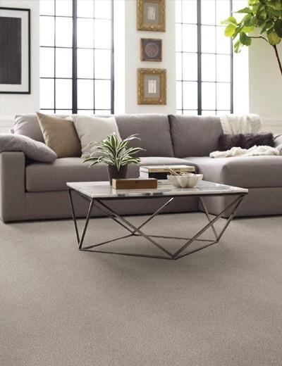 Living room carpet   Haley's Flooring & Interiors